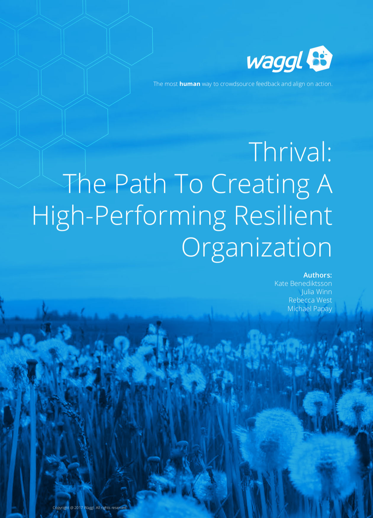 Thrival: The Path to Creating a High-Performing, Resilient Organization